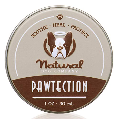 Natural Dog Company PawTection Dog Paw Balm, Protects Paws from Hot Surfaces, Sand, Salt, & Snow, Organic, All Natural Ingredients, 1oz Tin, 1 Count, Packaging May Vary