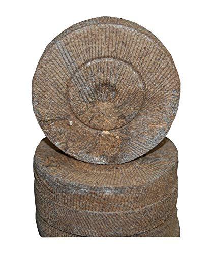 Jiffy-7 Peat Pellet 36mm Seed Starting - 200 ea by Growers Solution