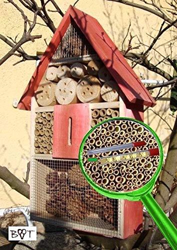 Großes Insektenhotel - NEU MIT SCHMETTERLINGSHAUS, groß 50 cm mit Lotus-Effekt Oberflächen Beschichtung und 2 Sichtgläsern 8 und 11 mm, Beobachtungsröhrchen komplett mit Zellstoff und Füllmaterial für Nistkasten Schmetterling Haus Bienen Wildbienen Unterschlupf rot lasiert Vogelhäuschen Nistkästen Insektenhotel - NEU MIT SCHMETTERLINGSHAUS,s Insektenhäuschen, zum Hängen und Aufstellen geeignet