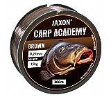 JAXON CARP Academy - Sedal de pesca de carpa, bobina de 300 m, 0,25-0,35 mm, monofilamento (300 m, 0,325 mm/20 kg)
