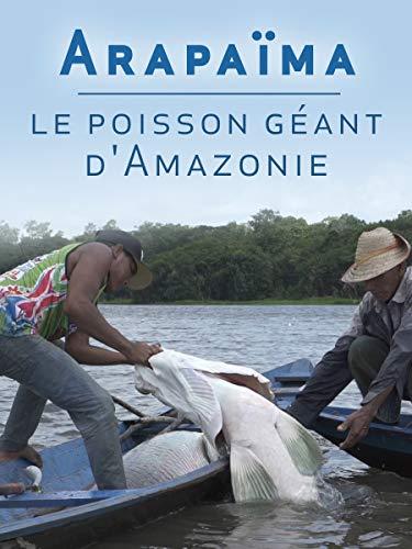 Arapaïma, le poisson géant dAmazonie