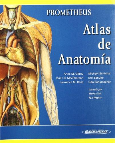Actualizaciones SERAM: Imagen en Oncología