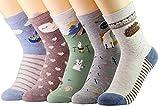 CityComfort Novedad Calcetines de algodón Tropa Unicornio Buho Gato Granja Princesa Sirena- Paquete de 5 Calcetines de Navidad Tamaño De La Caja De Regalo (Multicolor Forestal)