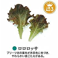 ベビーリーフ 種 ロロロッサ 小袋(約1dl)