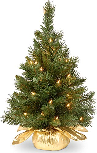 National Tree Company Pre-lit Artificial Mini Christmas Tree   Includes Small Lights and Cloth Bag Base   Majestic Fir - 2 ft