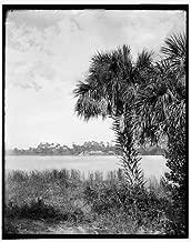 Photo: Landing, Eau Gallie, waterfronts, Indian River, Florida, FL, Detroit Publishing, 1880 . Size: