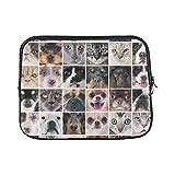 WDDHOME Diseño Personalizado Grupo de Perros de Raza Pura Gatos en Grafito Funda Suave para computadora portátil Bolsa Bolsa Piel para Macbook Air 11'(2 Lados)