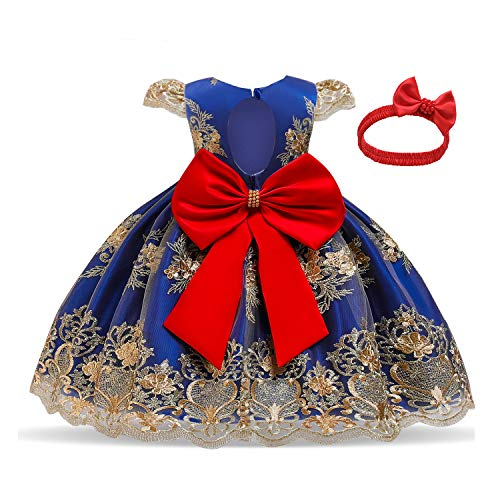 TTYAOVO Baby Girls Lace Embroidered Backless Princess Birthday Party Dress Size (90) 12-24 Months Blue