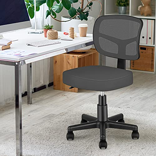 Armless Task Office Chair,MOLENTS Small Desk Chair with Mesh Lumbar...