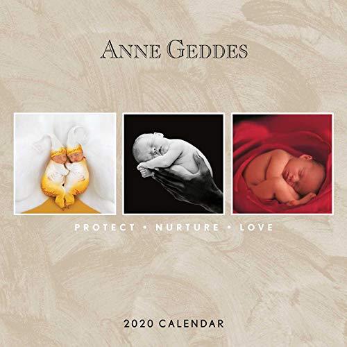 Anne Geddes: Protect Nurture Love 2020 Wall Calendar