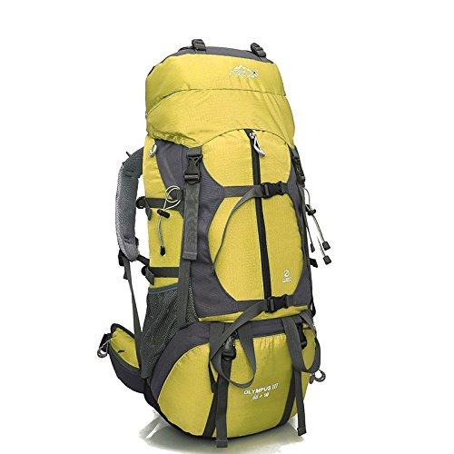 Professionnel en plein air, randonnée sac à dos voyage sac 80L litres capacité sacs à dos sac à dos team , yellow