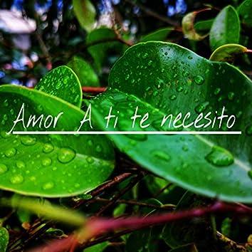 amor a ti te necesito (Version Acústica)