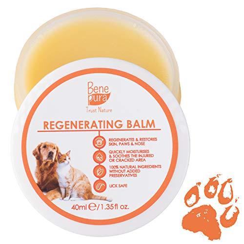 Balsamo Rigenerante per Animali Domestici – 100% Naturale – Per Zampe, Naso e Pelle – Per Cani Gatti