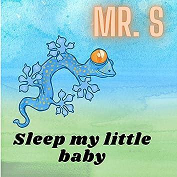 Sleep My Little Baby