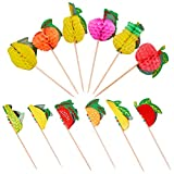 Qxzvzem 100 Pieces Cocktail Picks Paper Fruit Honeycomb Food Sticks Skewers Christmas Toothpicks for Appetizers Drink Garnish Luau Cake Tropical Margarita Party Decorations Bar Accessories 4 Inch Long