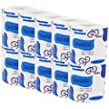10 Rolls/Lift Economical Installed Household Toilet Paper Roll Paper Facial Tissue