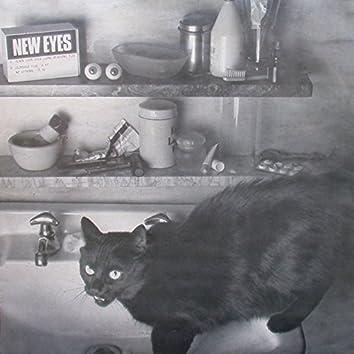 Black Cat's Eyes