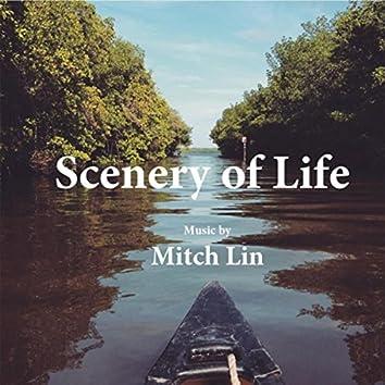 Scenery of Life
