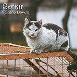 Sonar (Original Mix)