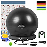 Yoga Ball, 65cm Exercise Ball Fitness Balls Stability Ball Anti-Slip & Anti- Burst for Yoga,Pilates, Birthing, Balance & Fitness with Workout Guide & Quick Pump