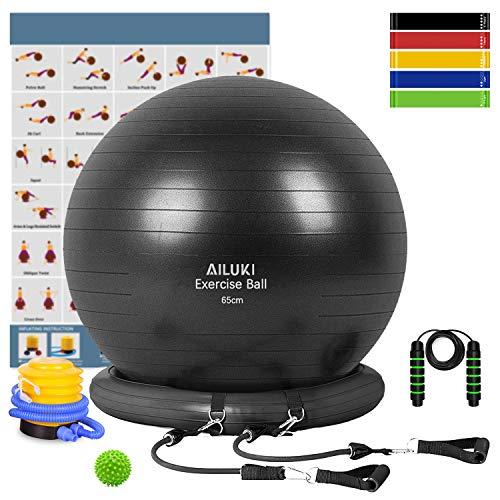 Yoga Ball, 65cm Exercise Ball Fitness Balls Stability Ball Anti-Slip & Anti- Burst for Yoga,Pilates, Birthing, Balance & Fitness with Workout Guide &...