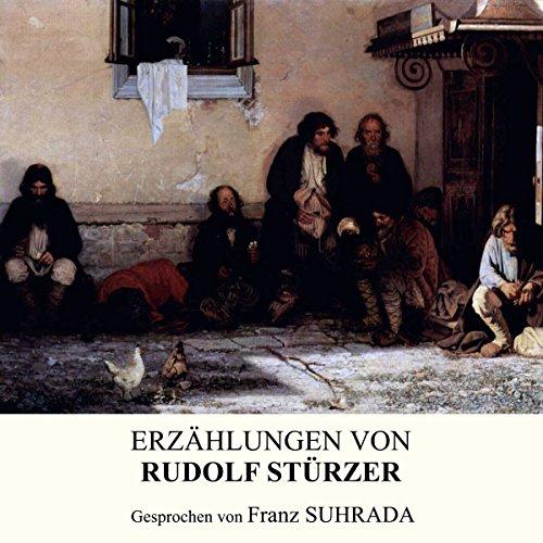 Erzählungen von Rudolf Stürzer cover art