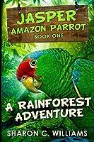 A Rainforest Adventure: Large Print Edition