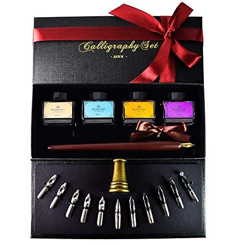 AIVN Calligraphy Pen Set