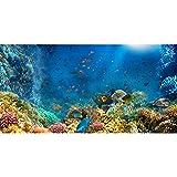 AWERT Fondo de acuario del mundo submarino de 61 x 30 cm, fondo de vinilo duradero (no pegatina)