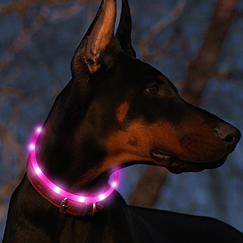 "BSEEN Led Dog Collar USB Rechargeable Glowing Pet Safety Collars Water Resistant Light up Cut to resize to fit 11""-27"" for Small, Medium, Large Dogs (Pink)"