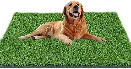 Fortune-star 51.2in X 31.5in Artificial Grass Dog Grass Mat and Grass Doormat Indoor Outdoor Rug Fake Grass Turf for Dogs Potty Training Area Patio Lawn Decoration