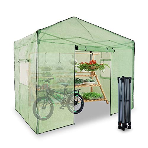 EzyFast 10'x6.5' Portable Pop Up Walk-in Plant Gardening Greenhouse, Instant Setup, Double Roll-Up Zipper Entry Doors and Double Roll-Up Side Windows,Grow Plants Seedlings Herbs or Flowers