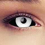 "Designlenses, Dos Sclera lentillas de color negro y blanco para Halloween 22mm Zombie lentillas de seis meses sin dioprtías/corregir + gratis caso de lente ""White Beast'"