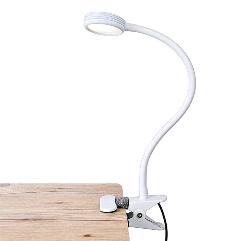 LED Reading Light, Clip On Light, Flexible Bed Light with 2 Brightness Levels, AC Adapter and USB Cord Included for Desk, Headboard (White) [Energy Class A+]