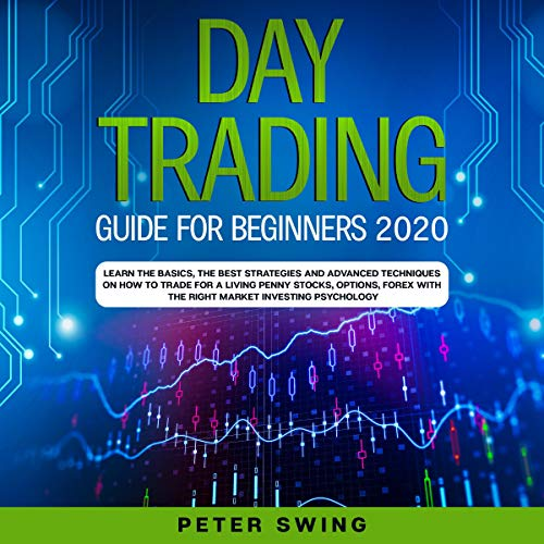 Day Trading Guide for Beginners 2020 cover art