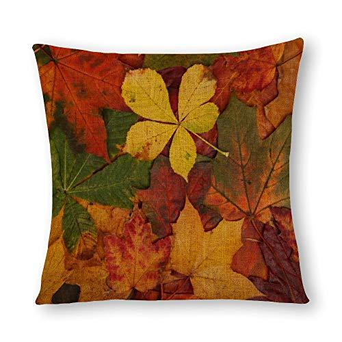 Perfecone Home Improvement - Funda de almohada de algodón para sofá y coche, diseño de hojas de otoño, 66 x 66 cm