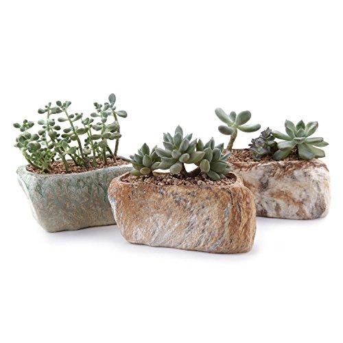 T4U Steinform Sukkulenten Töpfchen Mehrfarbig 3er-Set für Miniaturpflanzen