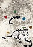Joan Miro Giclée Leinwand Prints Gemälde Poster