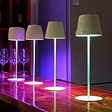 miglior uuffoo Lampada tattile a LED, lampada da tavolo co