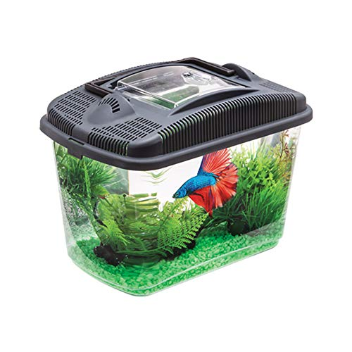 Aquael Betta Kit Acuario Lucha Peces Camarones Incluye