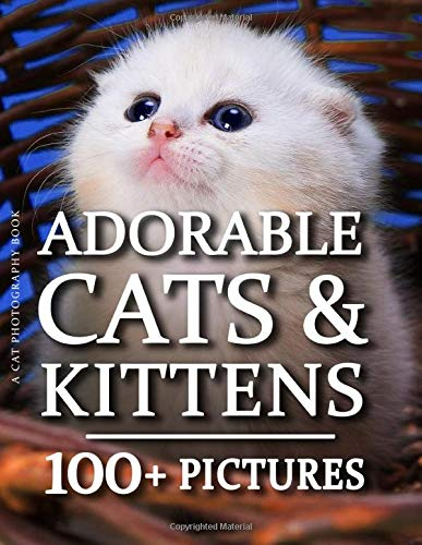 Cat Photography Book - Adorable Cat & Kittens: 100+ Amazing Kitten and Cat Photos in this fantastic Cat Picture Book For Children and Adults
