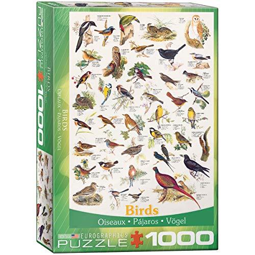 Birds 1000 Piece Puzzle