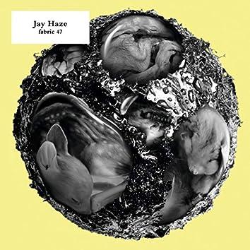 fabric 47: Jay Haze (DJ Mix)