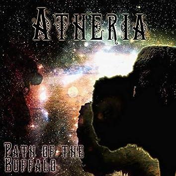 Path of the Buffalo