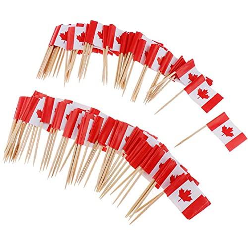 100pcs Serviette Kanada-flaggen-favoriten Mini-Frucht-Cocktail Essen Zahnstocher Sticks Flag Flag Bunting