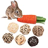 OVERTANG Guinea Pig Toys - Treats, Bunny Toys - Treats, Play Balls Rolling Chew Toys, Loofa Carrot Toys, for Rabbits, Chinchillas, Guinea Pigs, Hamsters