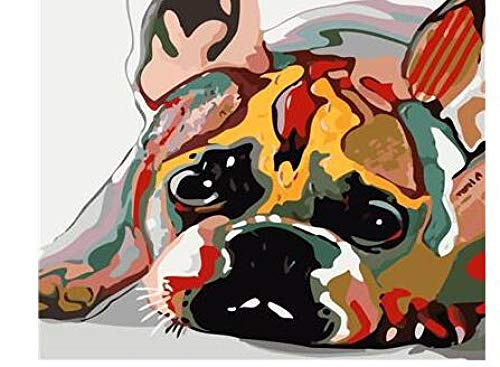 zddyx Paint by Number Paint Picture 21019 Drowsy French Bulldog - by Adult Paint Digital Kit DIY Wall Art 40x50cm(16x20in)with Frame