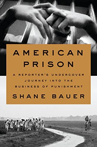 American Prison A Reporter s Undercover Journey into the Business of Punishment product image