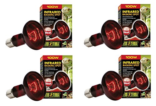 Exo Terra Heat-Glo Infrared Spot Lamp, 100-Watt/120-Volt (4 Pack)