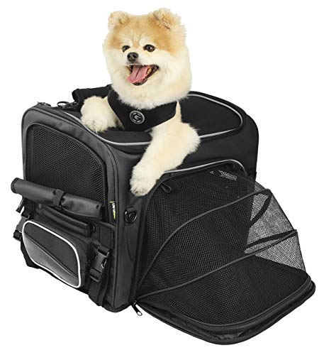 Nelson-Rigg Route 1 Rover Pet Carrier: Weather Resistant, Portable, and Secure Motorcycle pet Carrier/Crate